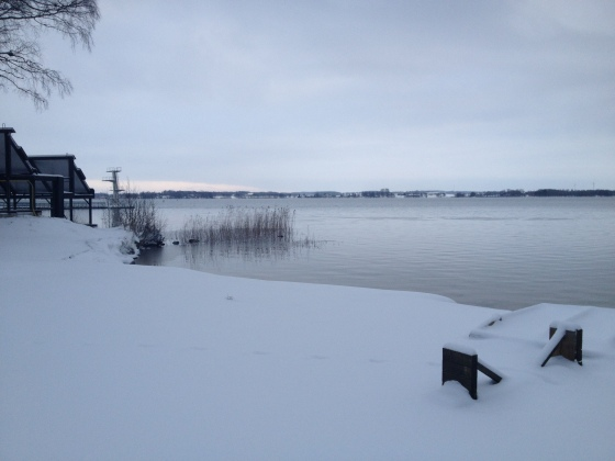 Vinter i råssnäs